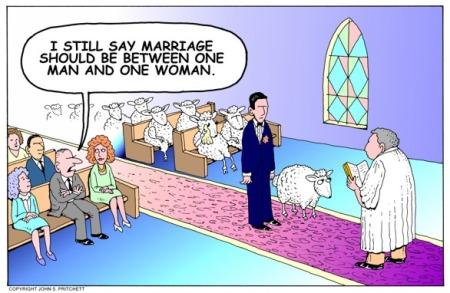 toon_marriage_sheep